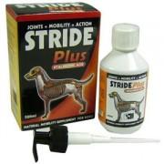 Страйд плюс для активной и подвижной жизни вашей собаки. Инструкция, применение.
