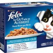 Недорогой корм Феликс для кошек. Состав, полезные свойства.