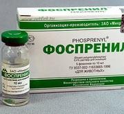 Антивирусное средство Фоспренил для кошек. Инструкция по применению, отзывы.