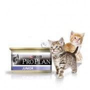 Корма линии Про План для кошек, их разновидности. Узнаем мнения ветеринаров.