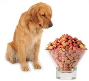 Интернет зоомагазин PetShop: товары для - Санкт