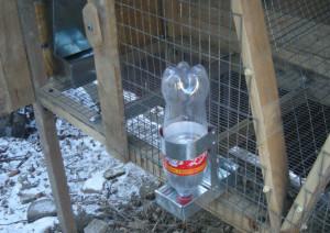 Кролики поилки своими руками из бутылок