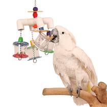 попугай с игрушками