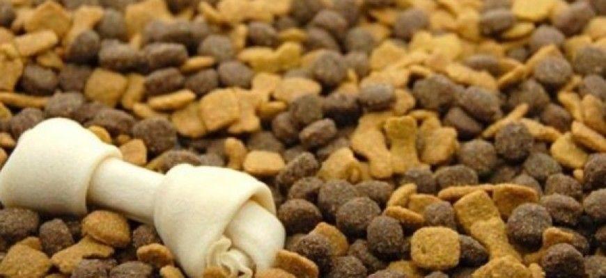 сухой корм для животных