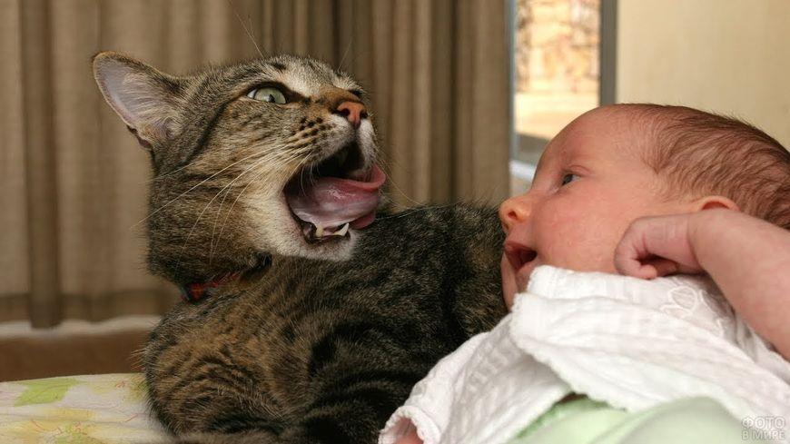 Кошка и грудной ребенок